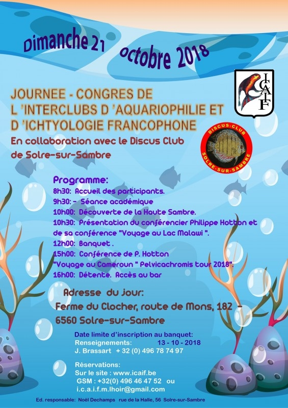 affiche icaif 10.18