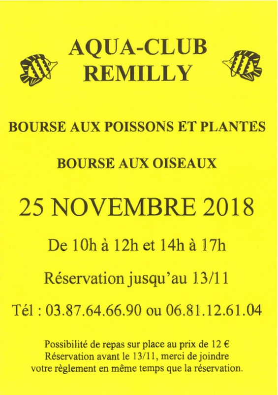 affiche remilly 18