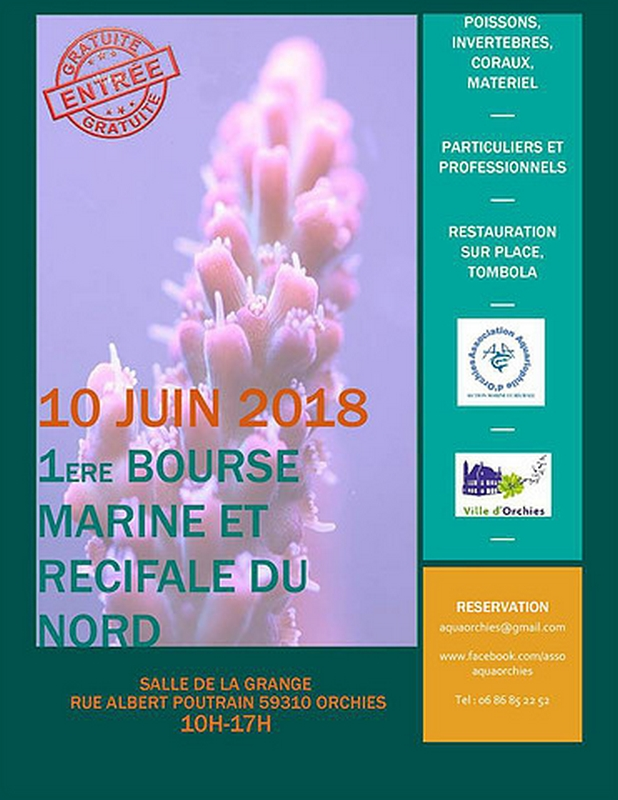 bourse orchies 10 juin 18
