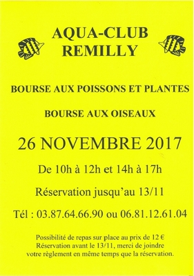 affiche remilly